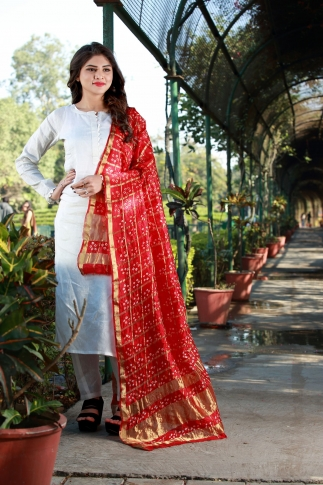 This Pretty Dupatta To Your Wardrobe For Your Semi-Casuals Or Festive Wear