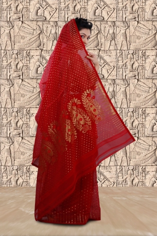 Red Jamdani Saree With Woven Design 2